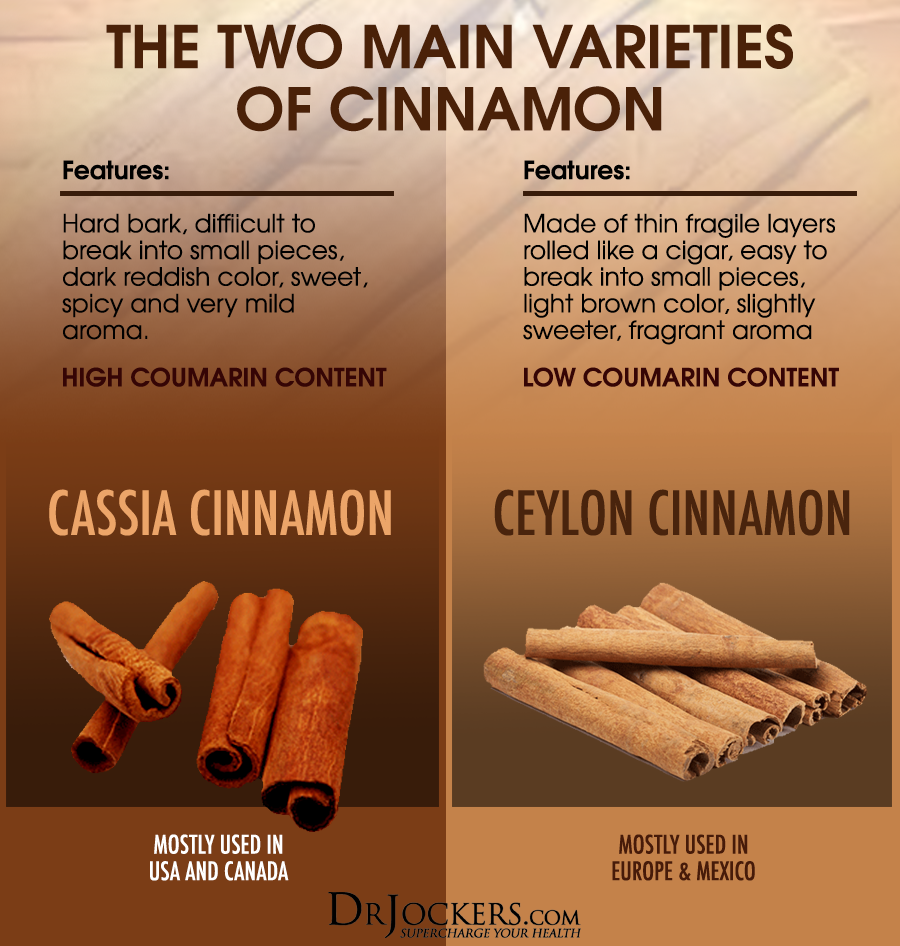 What is the Best Type of Cinnamon to Use? - DrJockers.com