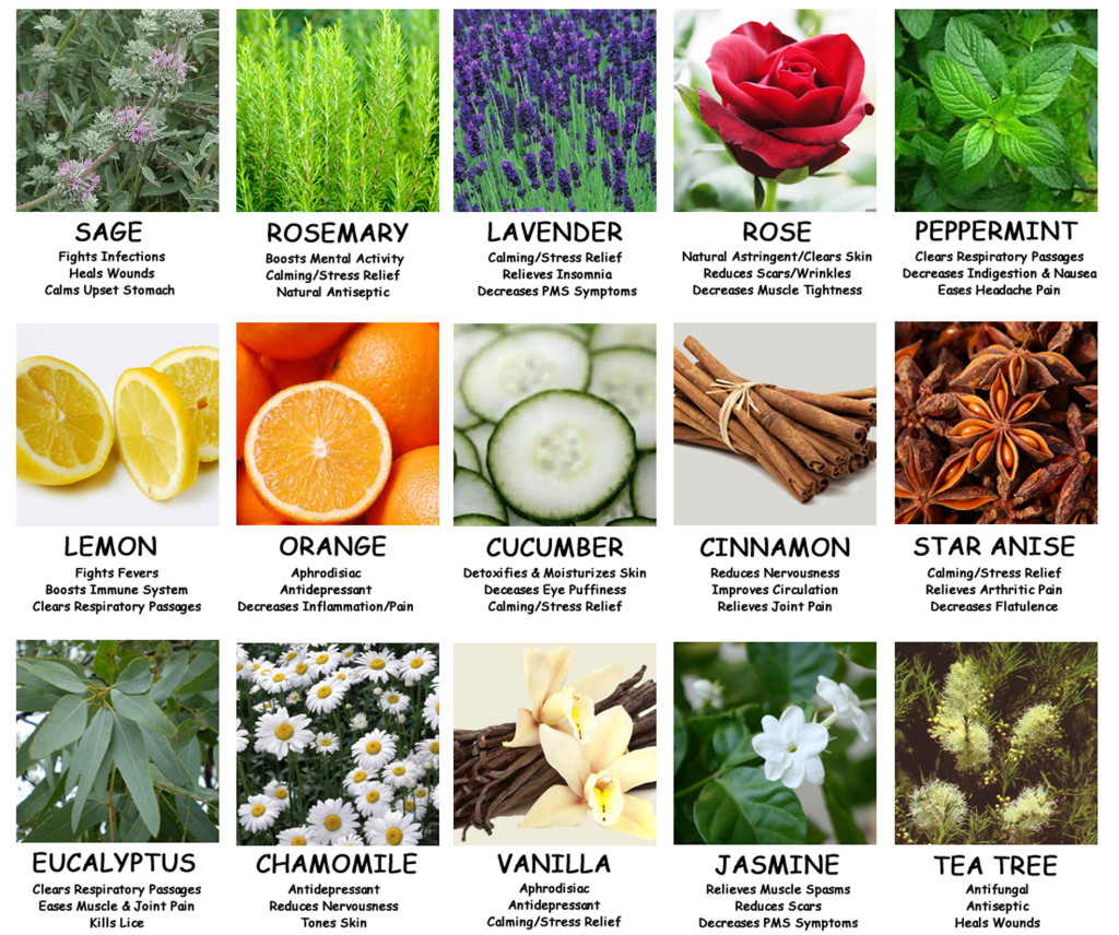 #B62115 Essential Oils Have Healing Properties Highly Rated 1309 Benefits Of Essential Oil wallpapers with 1024x856 px on helpvideos.info - Air Conditioners, Air Coolers and more