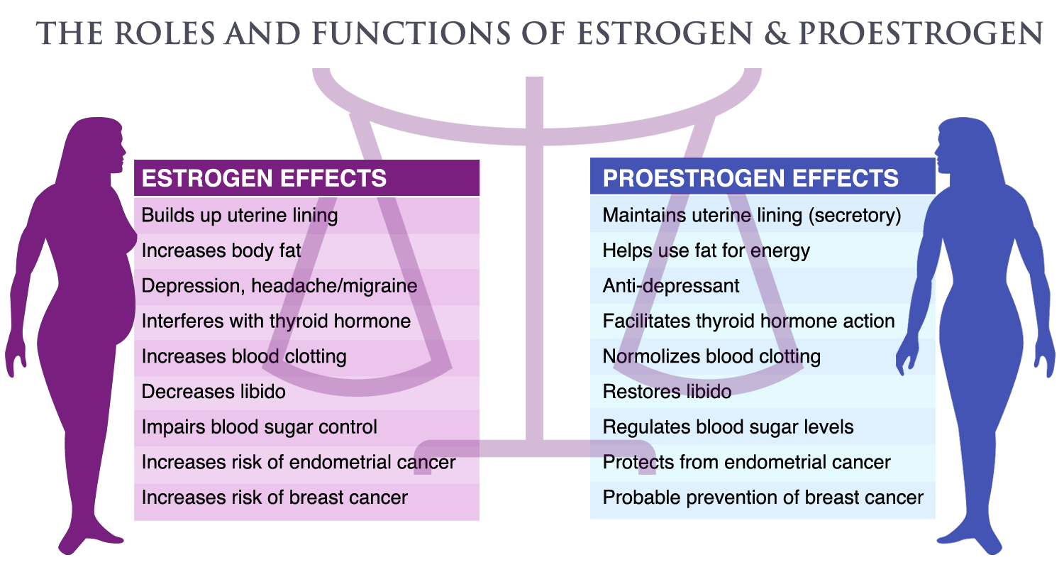 estrogen in men