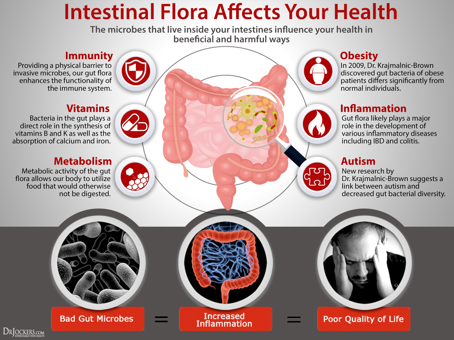 10 ways to improve the gut microbiome for Floar meaning