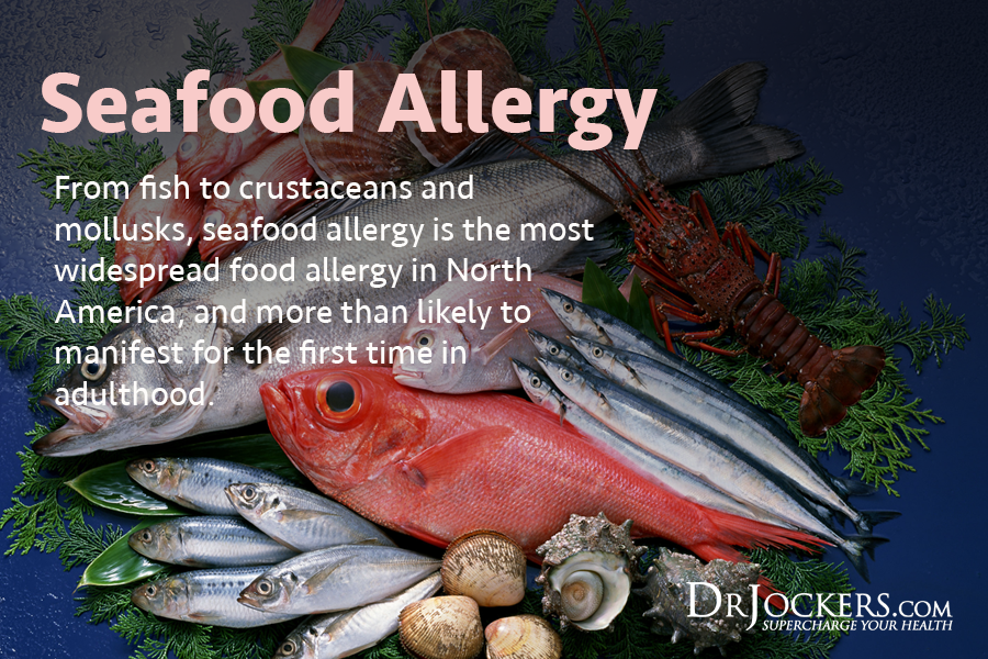 why i dont eat seafood Although there are some great health benefits of eating seafood,  is eating seafood harmful or beneficial for thyroid  why some people don't do well with.