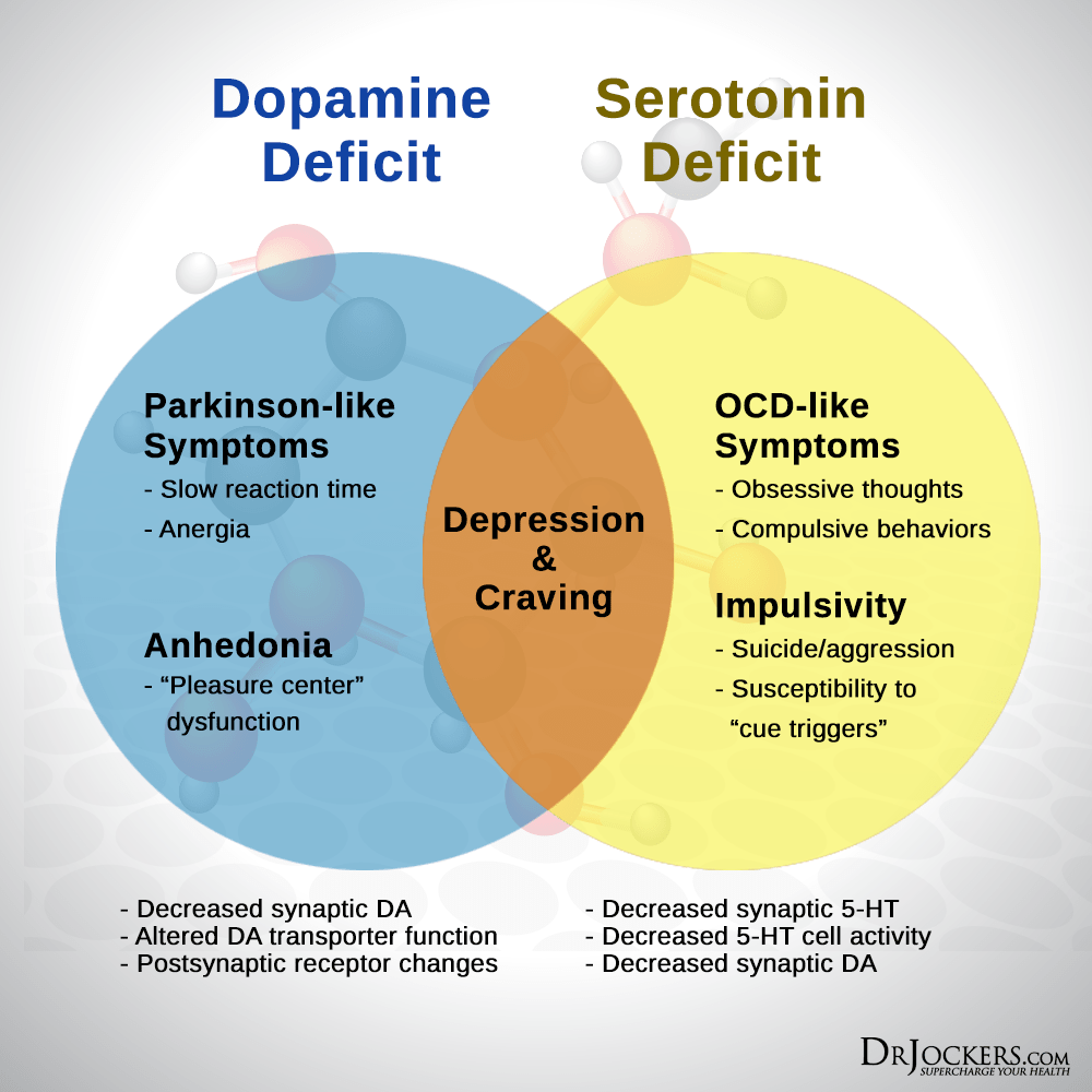 serotonin effect on brain Various alterations in corresponding genes affect the levels of serotonin or sensitivity to serotonin and may cause behavioral changes.