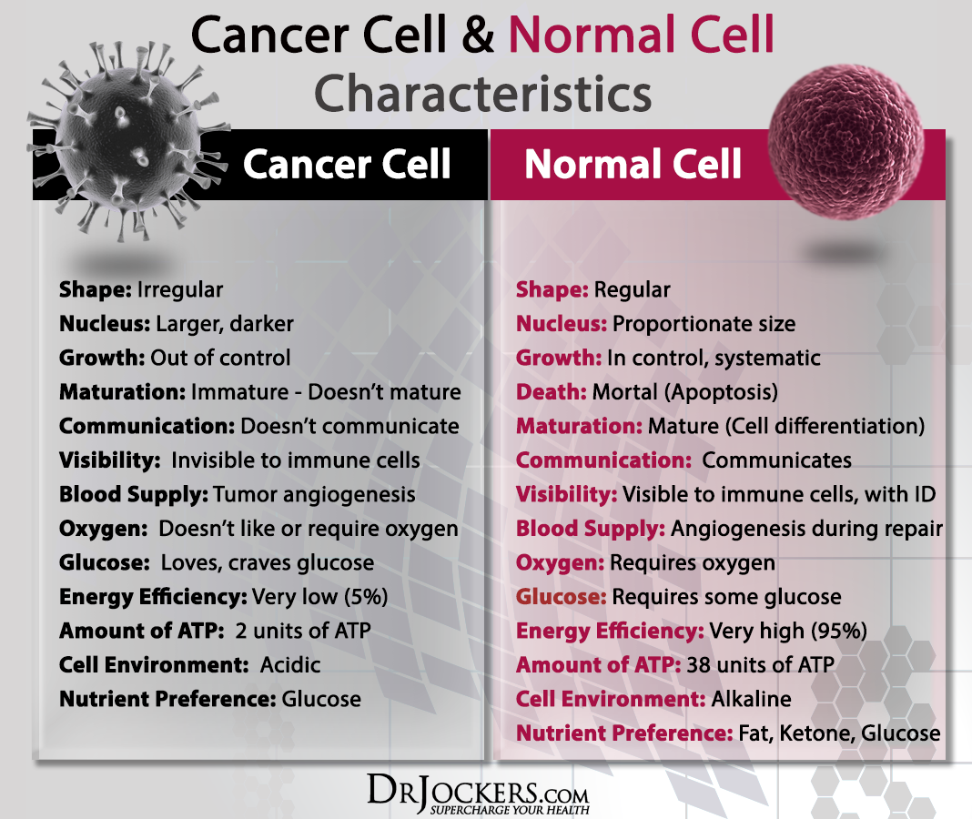 CANCERCELLS_Normal and Cancer Cell Characteristics_2