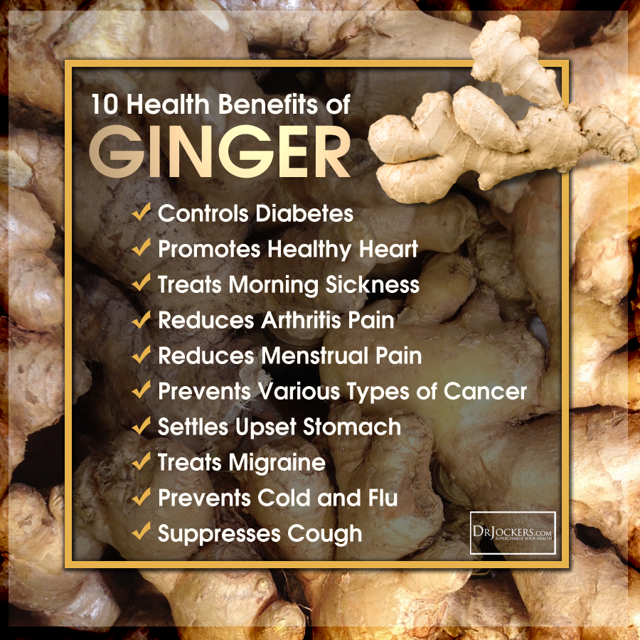 cancerstemcell_ginger