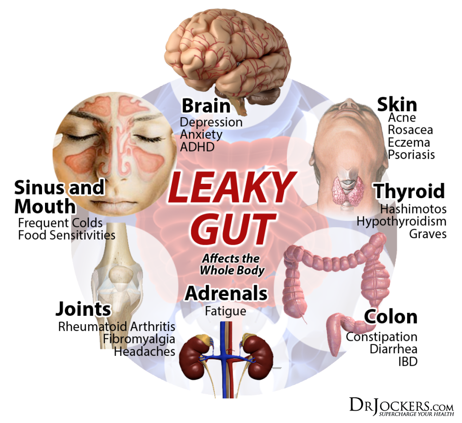 healthyskin_leakygut_cycle