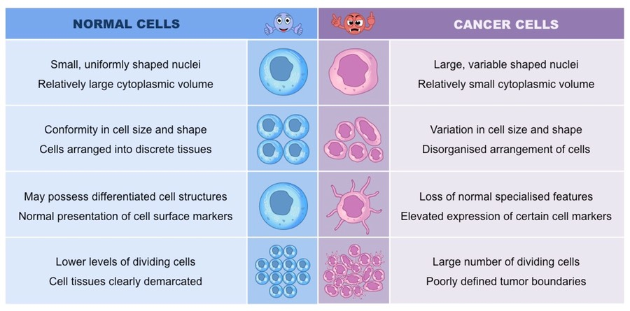 cancer-cells_med