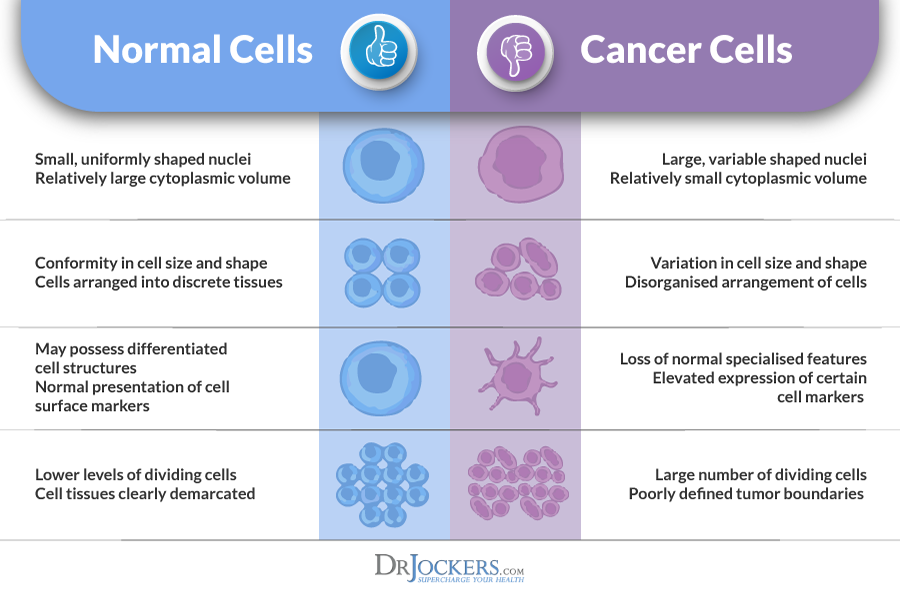 how does metastatic cancer form in the body drjockerscom
