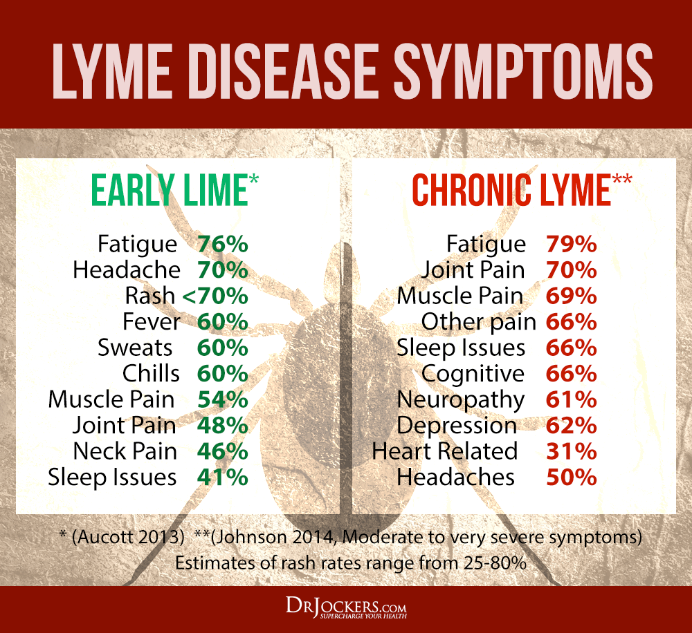 lyme disease antibiotics not working