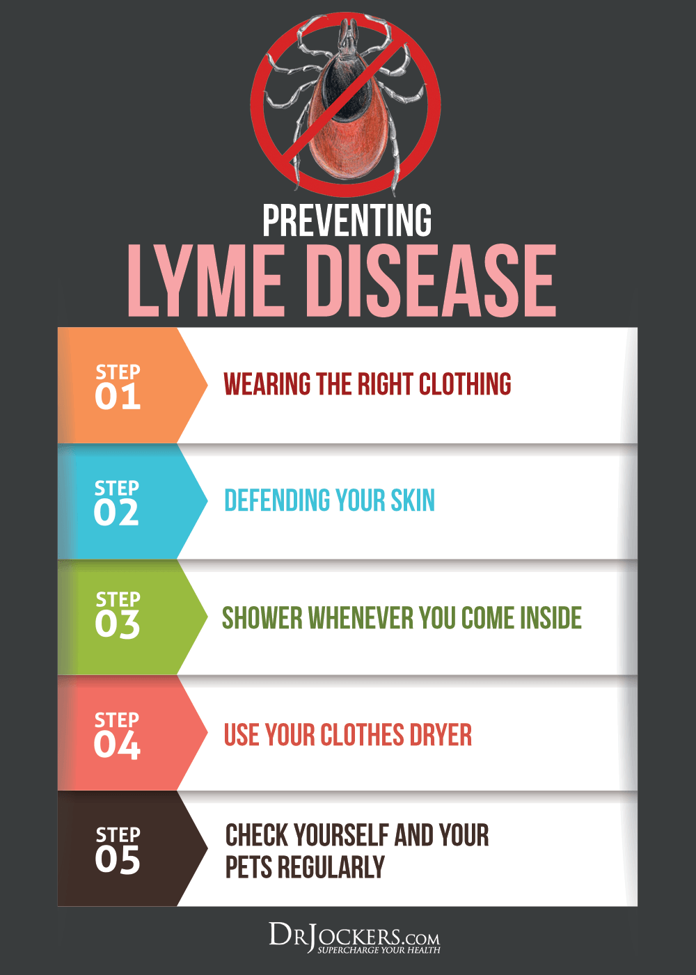 PREVENTINGLYMEDISEASE_Prevention